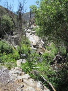 10 Mile Creek