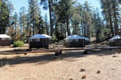 Grant Grove Village Tent City 2017